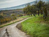 Copyright-Flavius-Croitoriu_Rally-Hungary