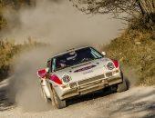 Tess-Rally-2019-Adi-Ghebaur-PS1-003