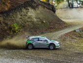 Tess-Rally-2019-Adi-Ghebaur-PS8-004