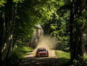 Copyright-Flavius-Croitoriu_WRC-Estonia-66