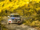 Tess-Rally-2019-Adi-Ghebaur-shakedown-007