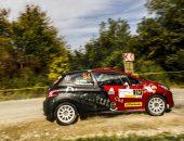 Transilvania-Rally-2019-AdiGhebaur-PS8-006