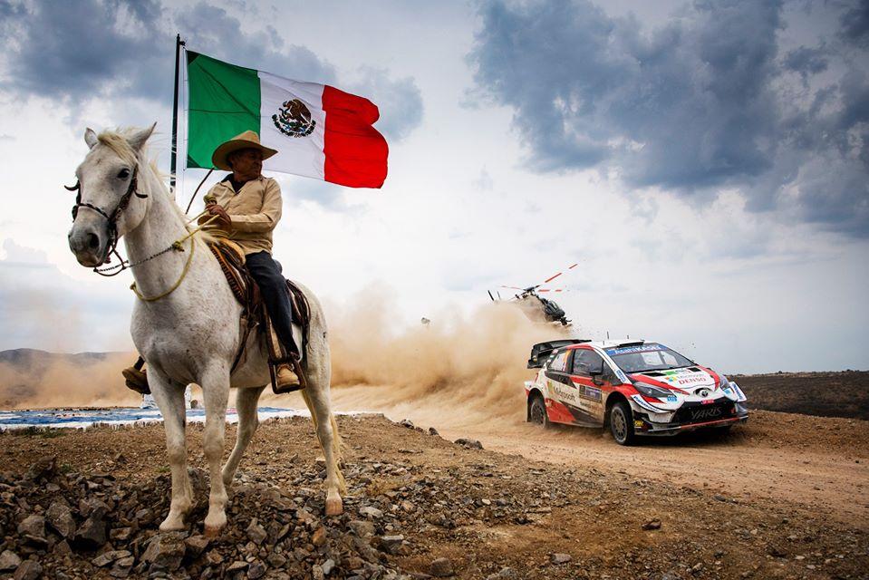 Pronosticuri WRC 2020 – Rezultate Rally Guanajuato Mexico